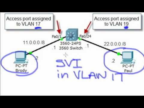 VLAN Interface Vs VLAN - Find Out The Difference, Now!